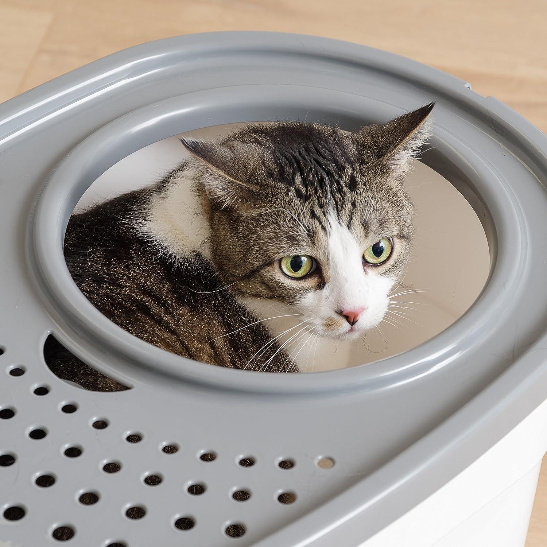 Amazon.com: IRIS Top Entry - Arena para gato con cuchara de ...