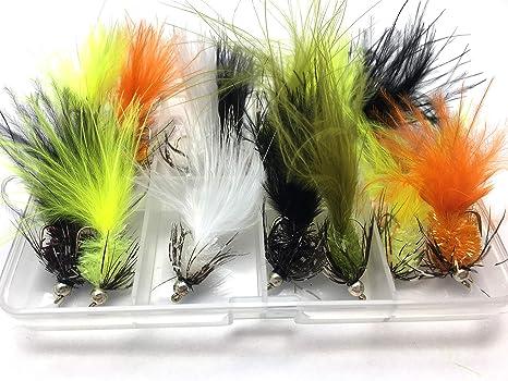 BestCity anzuelos para Pesca con Mosca, en Caja, selección de Humongous Humungus Trout Lures Beadhead: Amazon.es: Deportes y aire libre