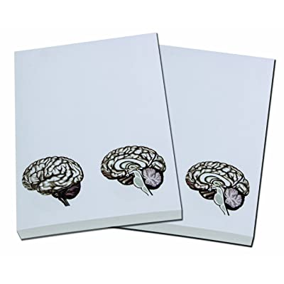 Brain Note Pad-memo Pad-notebook-100sheets-2pc in One Package : Notepads : Office Products