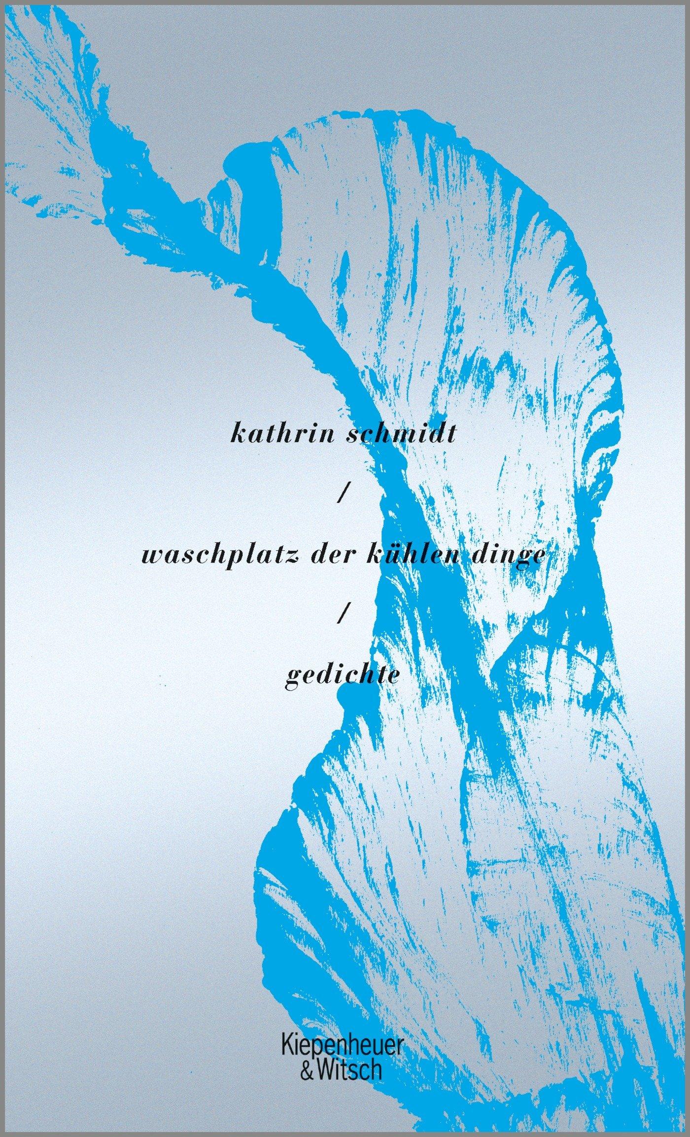 waschplatz der kühlen dinge: Gedichte: Amazon.de: Kathrin Schmidt ...