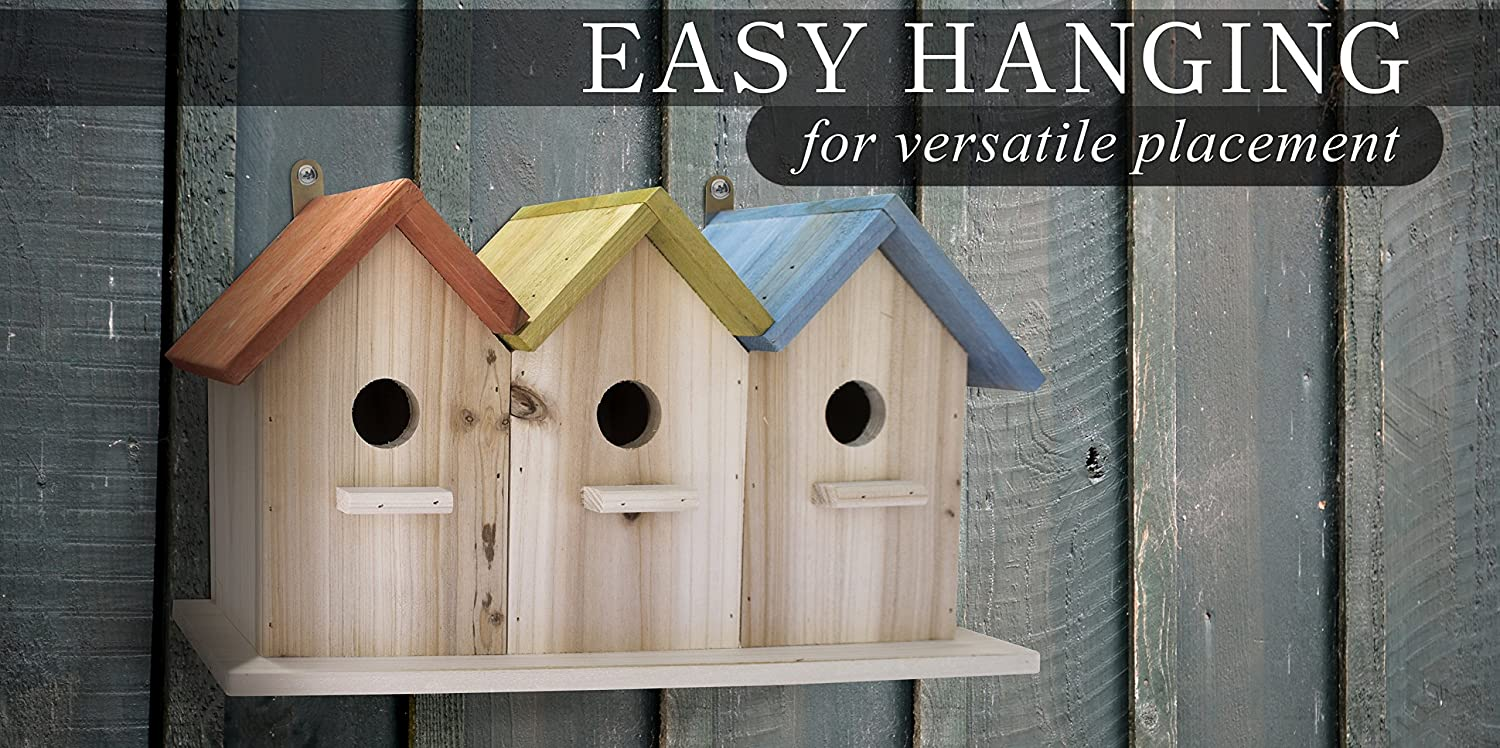 Outdoors Feeder for Birds Decorative Birdhouse and Home Decoration 23 Bees 3 Hole Bird House for Outside//Indoors//Hanging Bluebirds Wrens and Chickadees Kits for Children and Adults