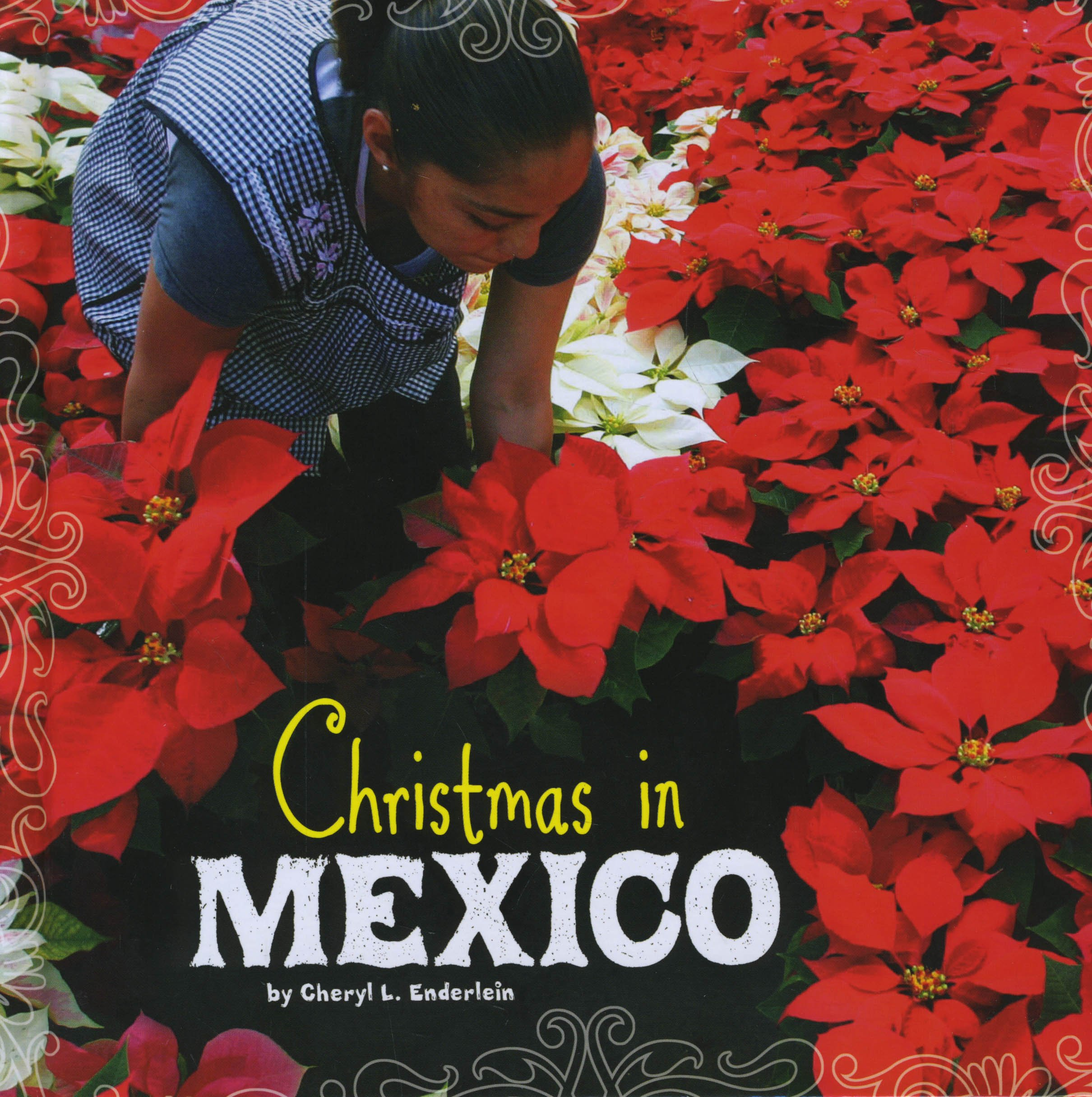 Christmas In Mexico.Christmas In Mexico First Facts Christmas Around The World