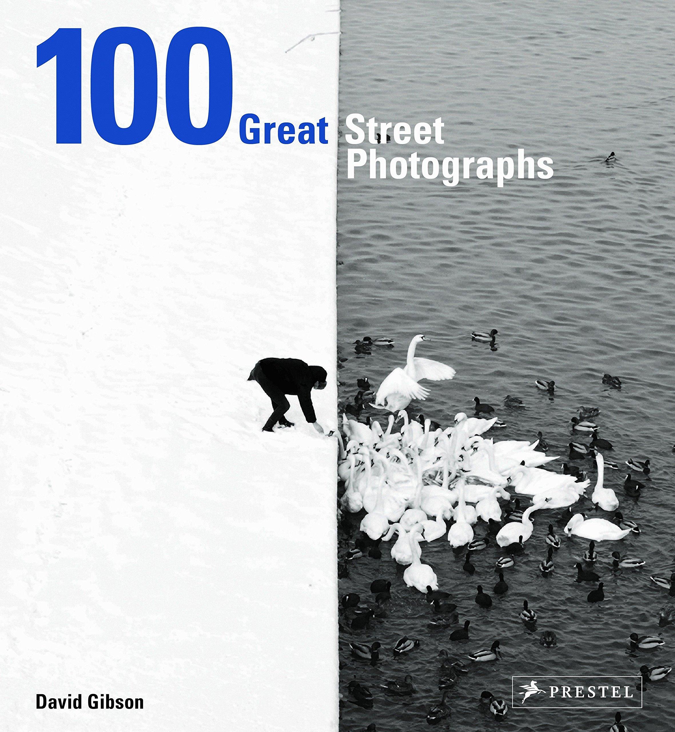 Download 100 Great Street Photographs ebook