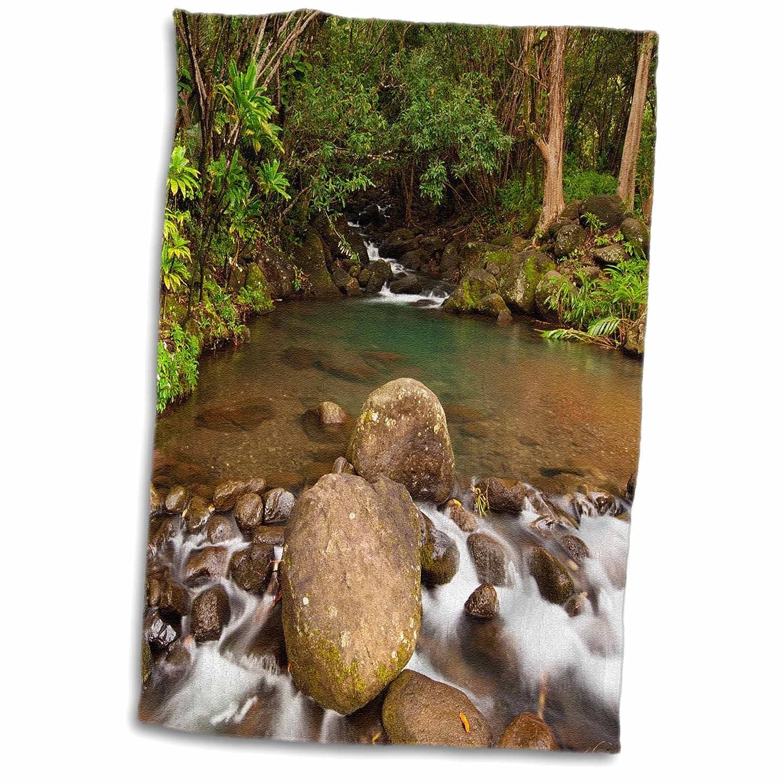3D Rose USA Hawaii Kauai Creek Flowing from a Rainforest TWL/_190677/_1 Towel 15 x 22