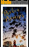 Broken Promises: The Road Series