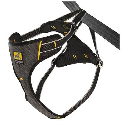 Kurgo Car Safety Dog Harness