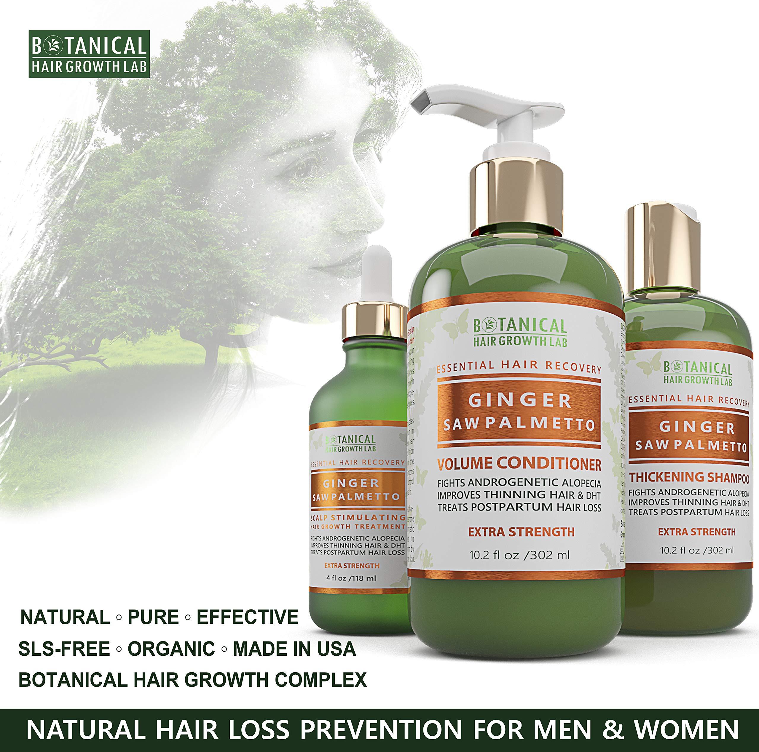 Botanical Hair Growth Lab Anti Hair Loss Shampoo Ginger - Saw Palmetto Organic Thickening Shampoo For Hair Thinning Prevention Alopecia Postpartum DHT Blocking 10.2 Fl Oz by BOTANICAL HAIR GROWTH LAB
