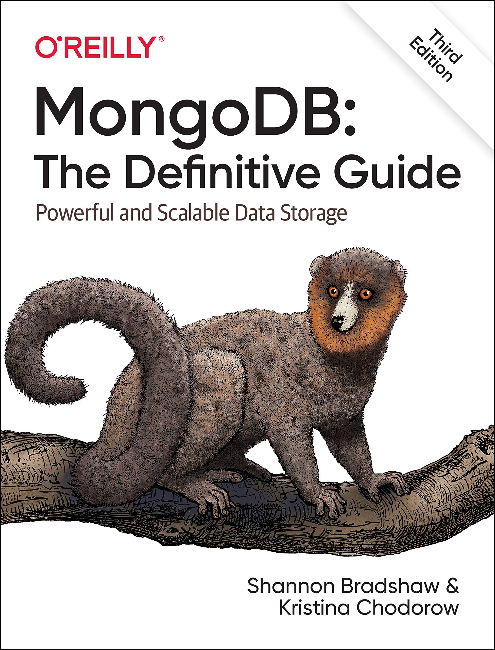 MongoDB: The Definitive Guide 3e Paperback – Import, 31 Aug 2019