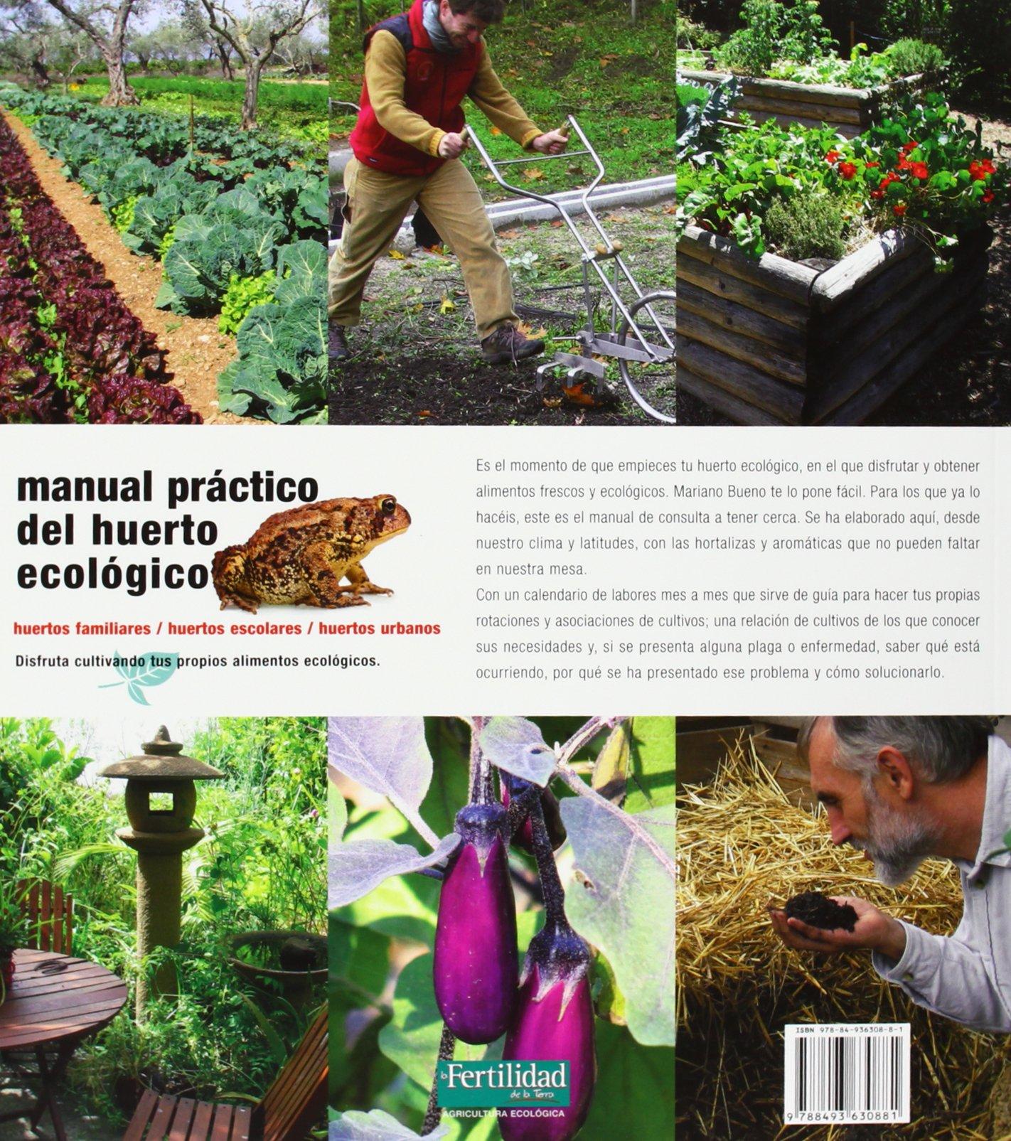 Manual Pr Ctico Del Huerto Ecol Gico Huertos Familiares Huertos  ~ Como Hacer Una Huerta Ecologica