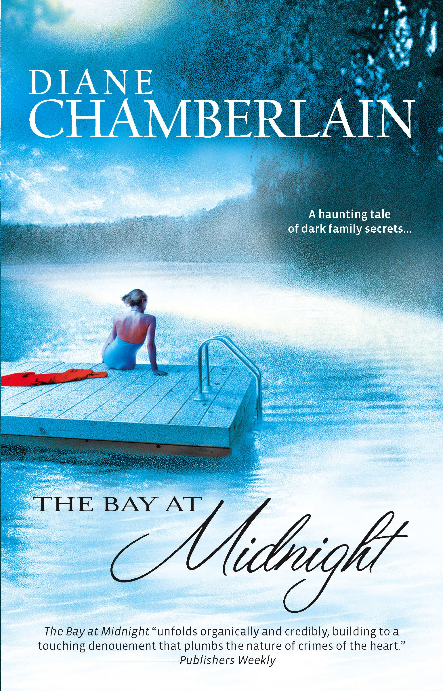 Download The Bay at Midnight pdf
