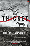 The Thicket (English Edition)