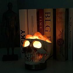 Skull Statue Himalayan Salt Lamp Set