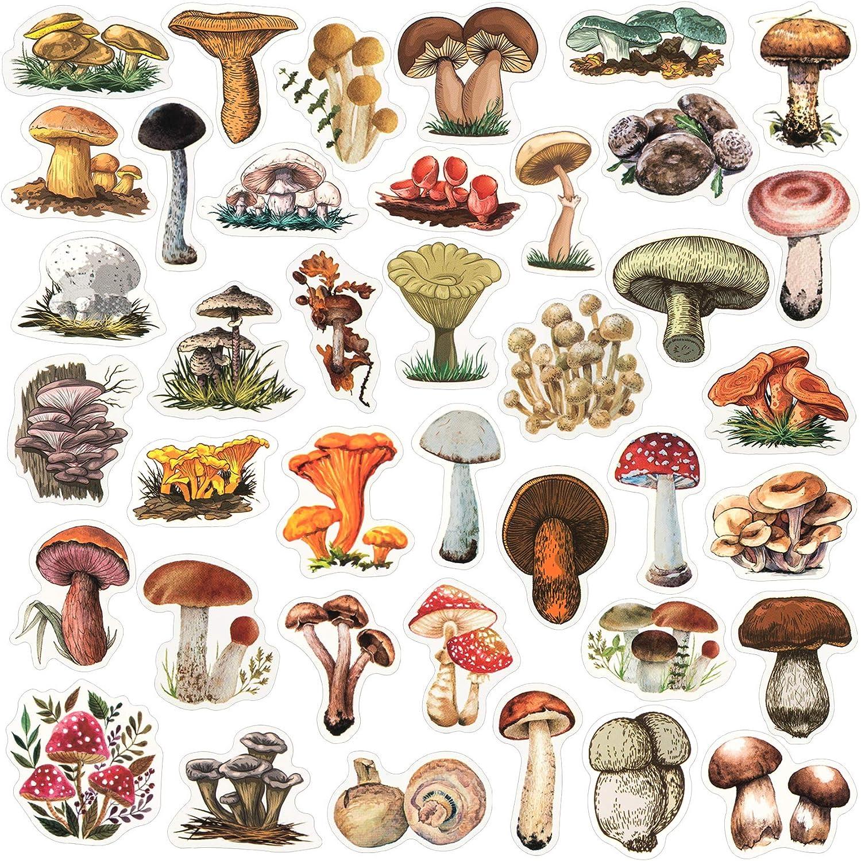 OIIKI 156PCS Mushroom Scrapbook Stickers, Self-Adhesive Mushroom Laptop Stickers Decals, Plants Decoration Stickers, Mushroom Collection, for Windows, Refrigerator, DIY Craft