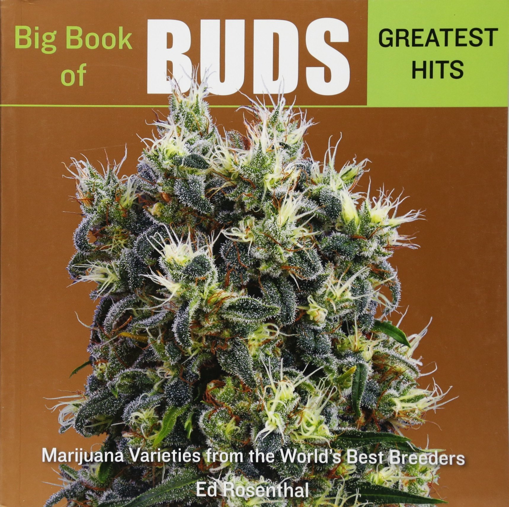 Download Big Book of Buds Greatest Hits: Marijuana Varieties from the World's Best Breeders pdf epub