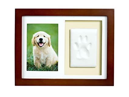 Amazon.com : Tiny Ideas Dog or Cat Paw Print Keepsake Wall Frame Kit ...