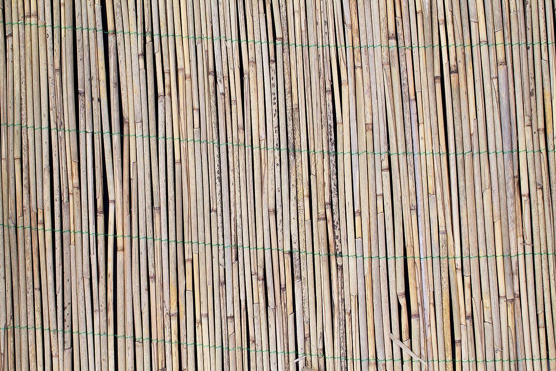 artplants.de Reed screening LUCA natural- coloured 20ft x 3ft//600cmx100cm bamboo screen