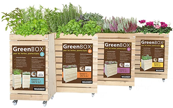 Wagner Green Box S B44 X H80 x T30 cm, Abeto: Amazon.es: Jardín