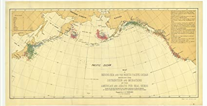 18 X 24 Canvas 1877 US Old Nautical Map Drawing Chart Of Bering Sea