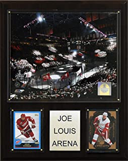 product image for NHL Joe Louis Arena Plaque, Styles May Vary