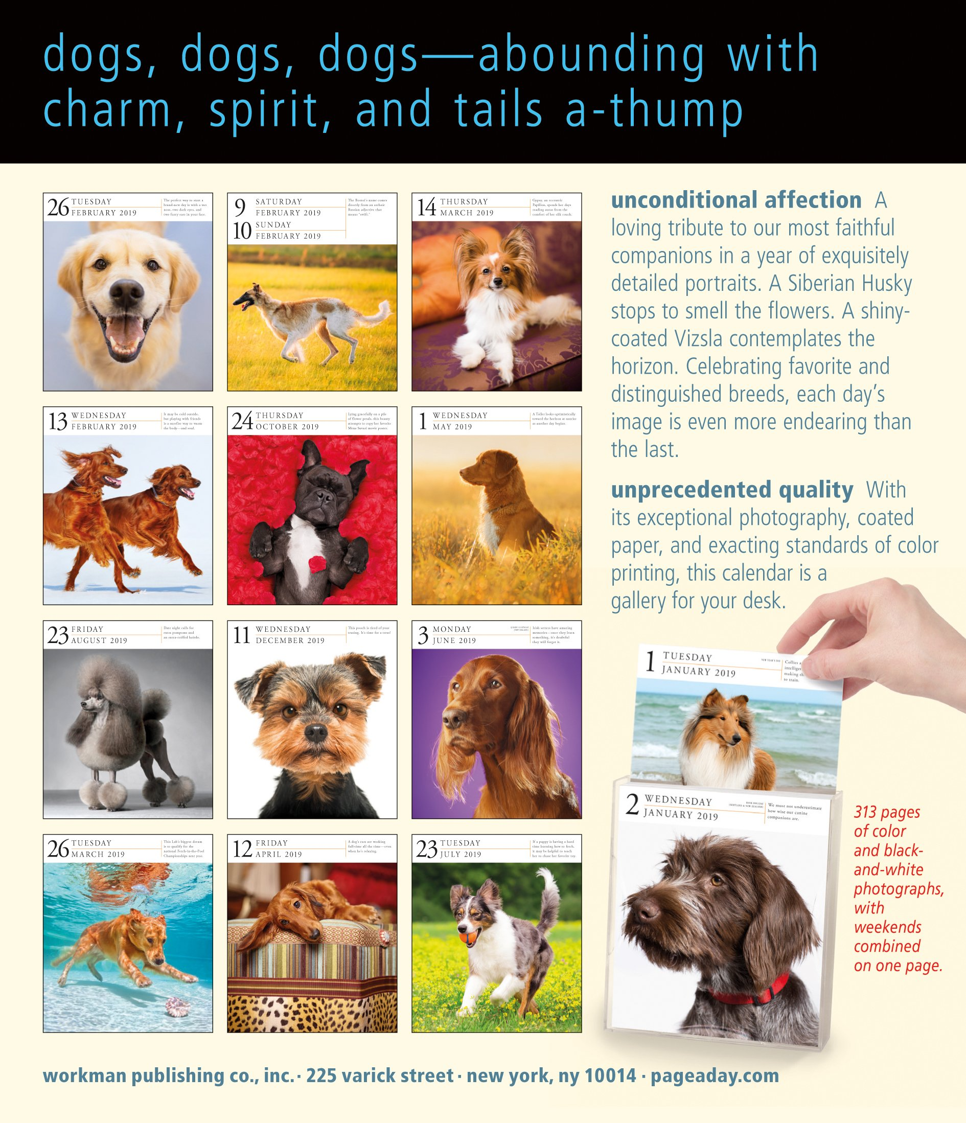 Day to Day Calendar 19 Jul 2018 Workman Publishing 1523503076 Pets /& Equine Address Books Dog Page-a-Day Gallery Calendar 2019 Calendar