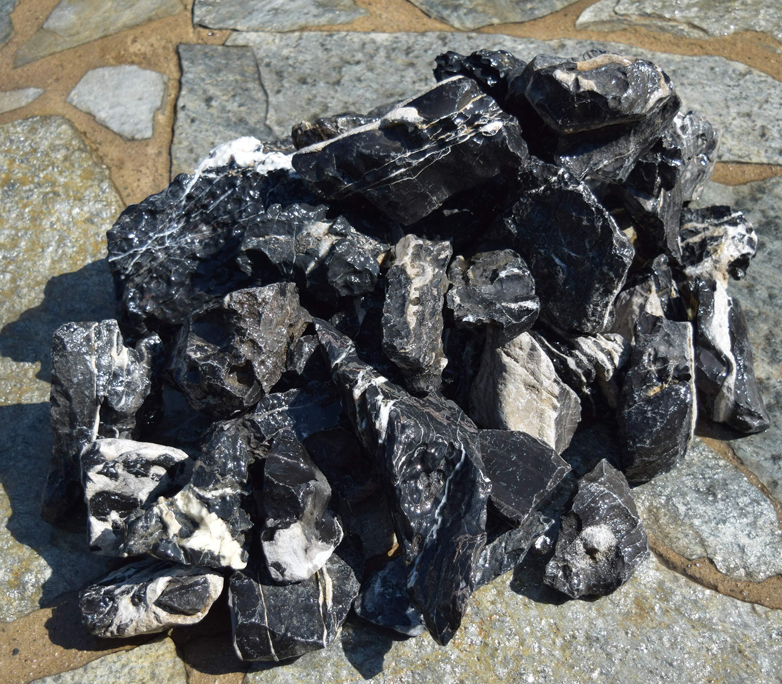 Manzanita Driftwood 20lb BlackSeiryu Stone by Manzanita Driftwood