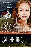 Gathering (PAVAD: FBI Romantic Suspense Book 12)