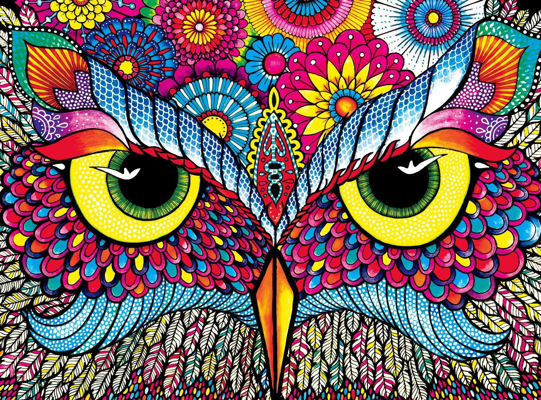 Buffalo Games - Vivid Collection - Owl Eyes - 1000 Piece Jigsaw Puzzle