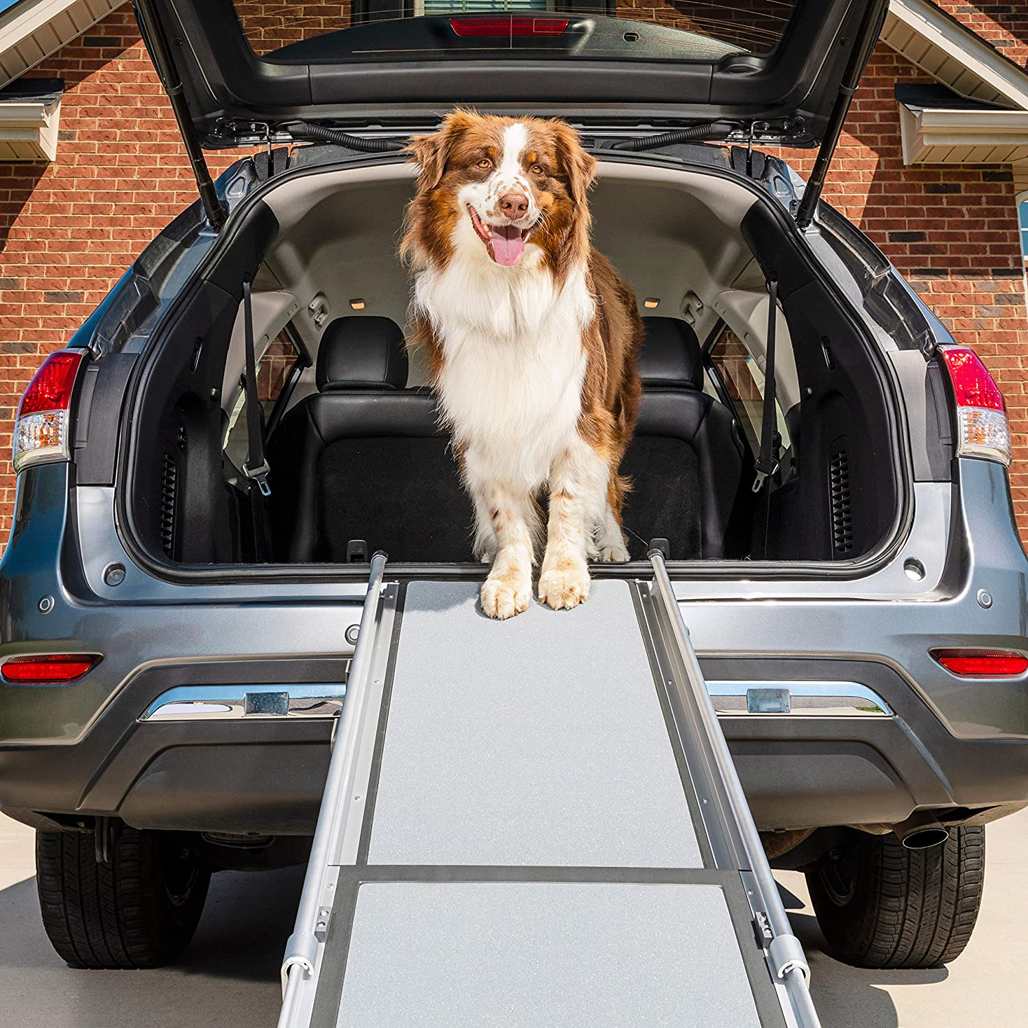 Petsafe Happy Ride Deluxe Telescoping Pet Ramp 72 Inch Portable Lightweight Aluminum Dog And Cat Ramp Carrying Case Available Pet Door Safety Ramps Pet Supplies