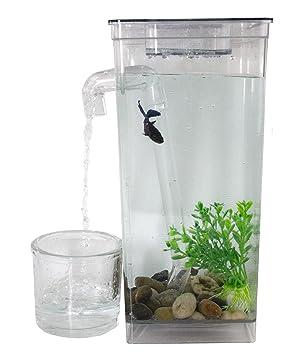 Fun Self Limpieza tanque de peces: Amazon.es: Productos para mascotas