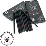Black Widow Colored Pencils for Adults, the Best Color Pencil Set for Adult Coloring Books, A Quality 24 Piece Blackwood Drawing Kit Available to Use in your books.