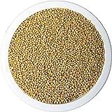 Senfsaat ganz gelb 1 kg 1000 g ~ naturrein ~ gentechnisch unverändert ~ unbegast ~ unbestrahlt ~ PEnandiTRA®
