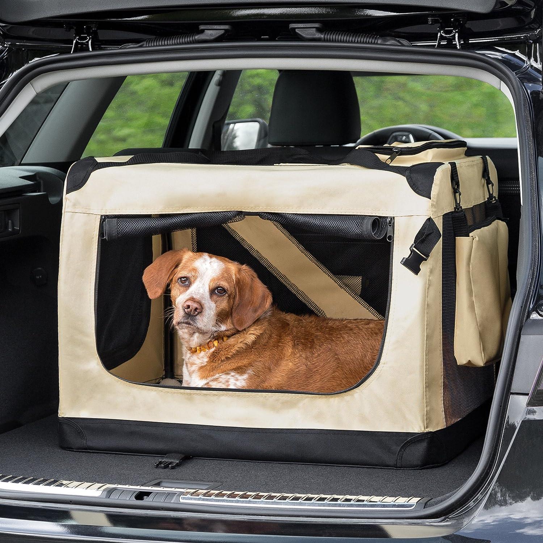Bei der Wahl einer Transport für Hunde sollten man sorgsame vorgehen.