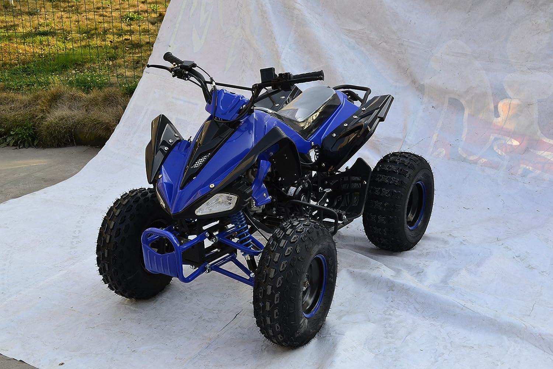 125cc Bandit Quad Bike Atv Automatic Off Road Petrol With