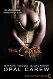 The Captive (Red Hot Fantasies Book 4)