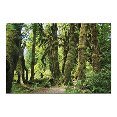 Olympic National Park, Washington - HOH Rainforest Moss Covered Trees 9014480 (Premium 1000 Piece Jigsaw Puzzle for Adults, 20x30, Made in USA!): Toys & Games