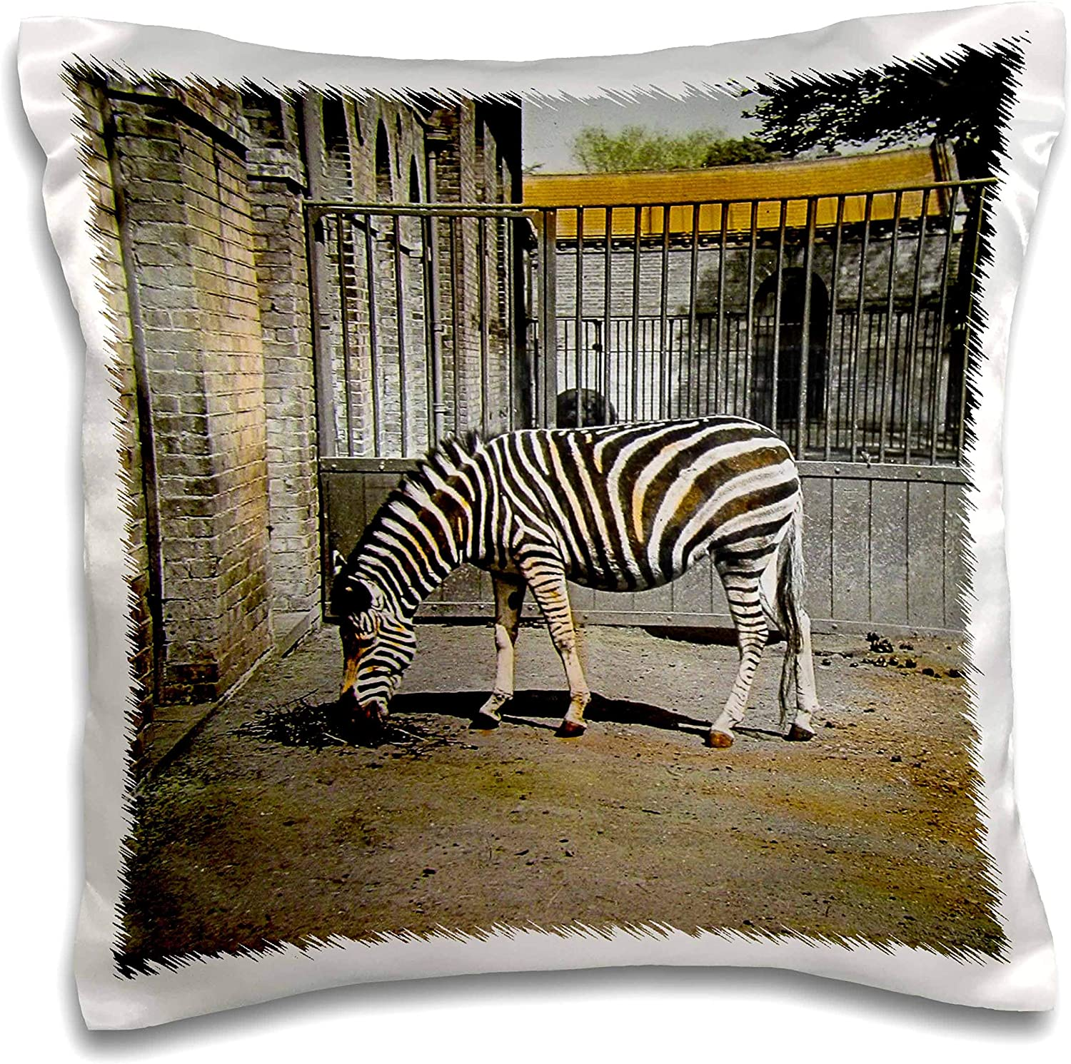 3dRose Scenes from the Past - Magic Lantern - Vintage Early 1900s Zebra in the Zoo Victorian Era Photo Wildlife - 16x16 inch Pillow Case (pc_301302_1)