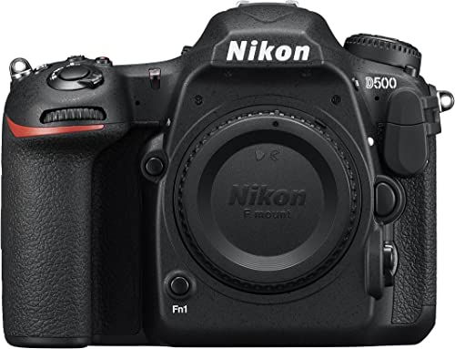 Nikon D500 Best Camera for Safari