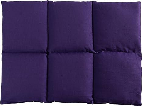 Cuscini Riscaldanti Con Semi.Cuscino Termico Cuscino Con Semi Di Colza 40x30 6 Compartimenti