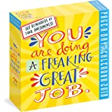 You Are Doing a Freaking Great Job Page-A-Day Calendar 2018