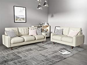 Container Furniture Direct Modern Tufted Velvet Living Room Sofa Set, 2 Piece, Beige,
