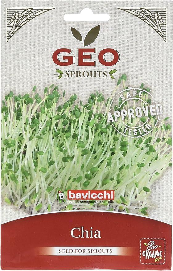 Geo Chia Semillas para germinar, Marrón, 12.7x0.7x20 cm: Amazon.es: Jardín