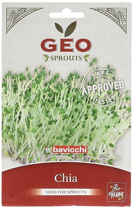 Geo Chia - Semillas para germinar, 12.7 x 0.7 x 20 cm, color marrón