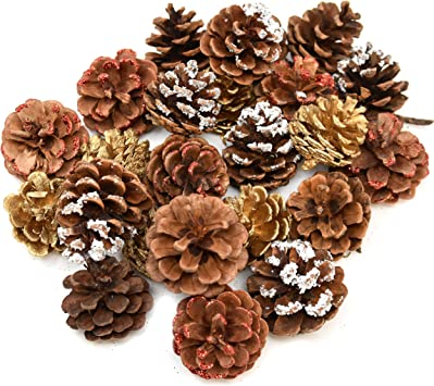 Amazon Com Gift Boutique 24 Pack Natural Pine Cones For Christmas Fall Thanksgiving Harvest Autumn Party Craft Accessory Decorations 4 Winter Holiday Colors Red White Gold And Brown Furniture Decor