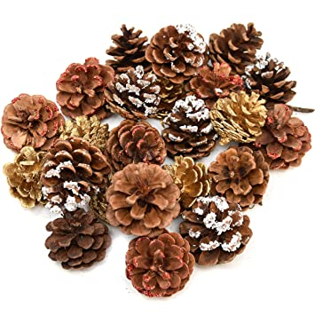 Gift Boutique 24 Pack Natural Pine Cones For Christmas Fall Thanksgiving Harvest Autumn Party Craft Accessory Decorations 4 Winter Holiday Colors Red