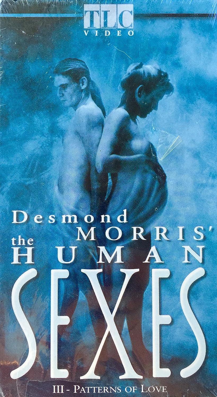 Desmond Morris' The Human Sexes: Iii Patterns Of Love: Amazon.ca ...