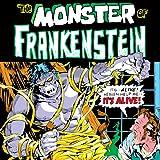Frankenstein (1973-1975) (Issues) (18 Book Series)