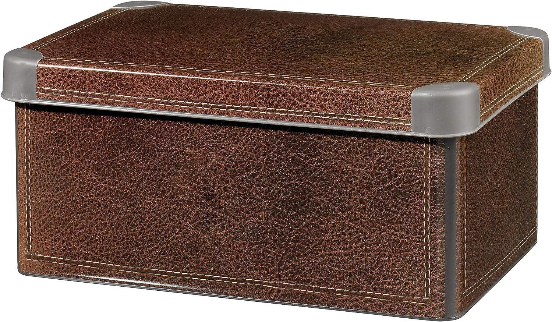 Curver Caja Decobox 7 L Piel: Amazon.es: Hogar