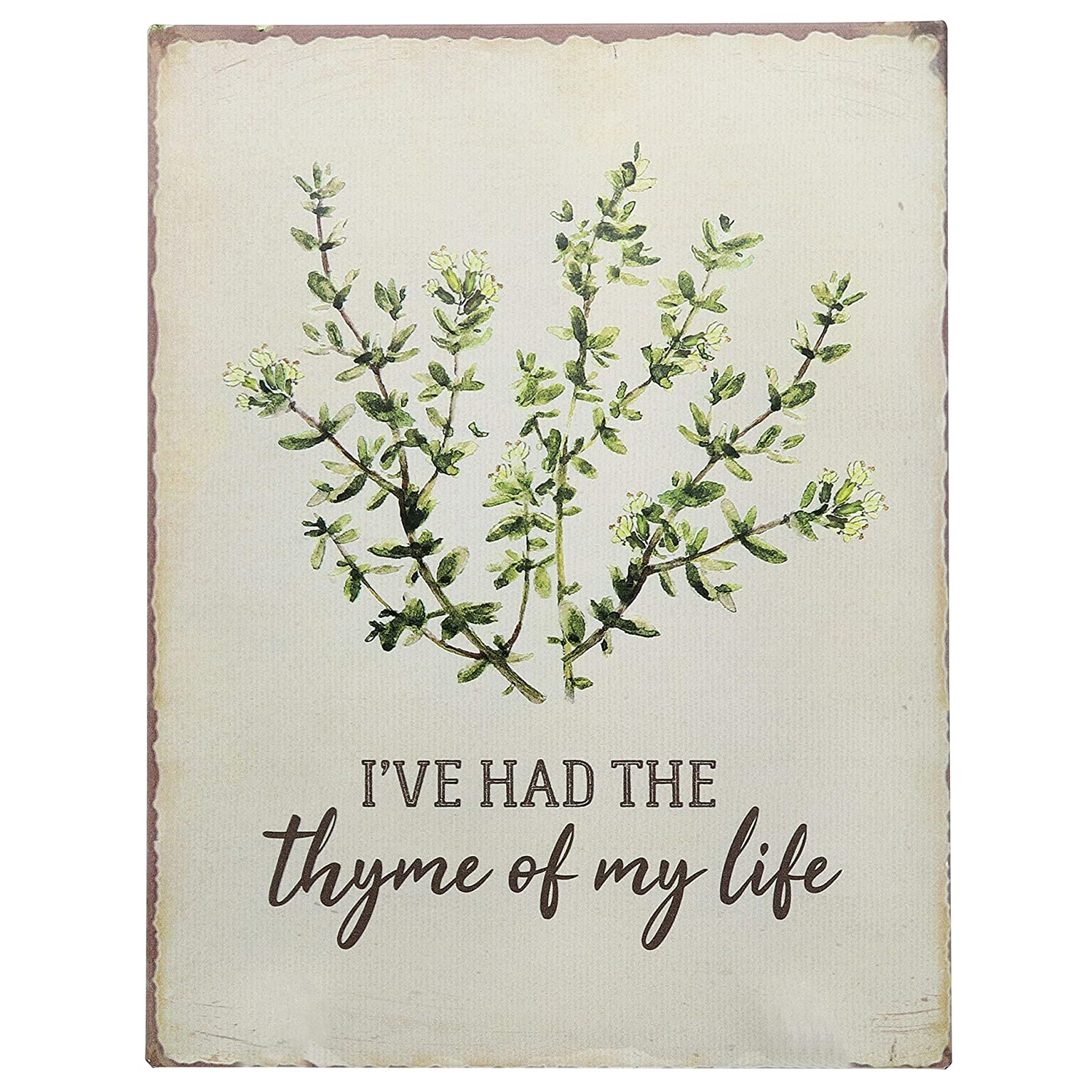 "Barnyard Designs I've Had The Thyme of My Life Funny Retro Vintage Tin Bar Sign Country Home Decor 13"" x 10"""