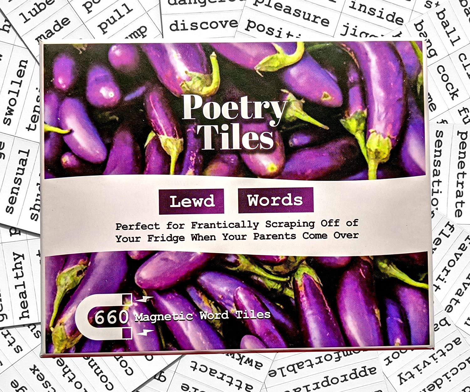 Poetry Tiles - 536 Dirty Words Word Magnets - Smut Adult Themed Kit for Refrigerator Poems and Stories