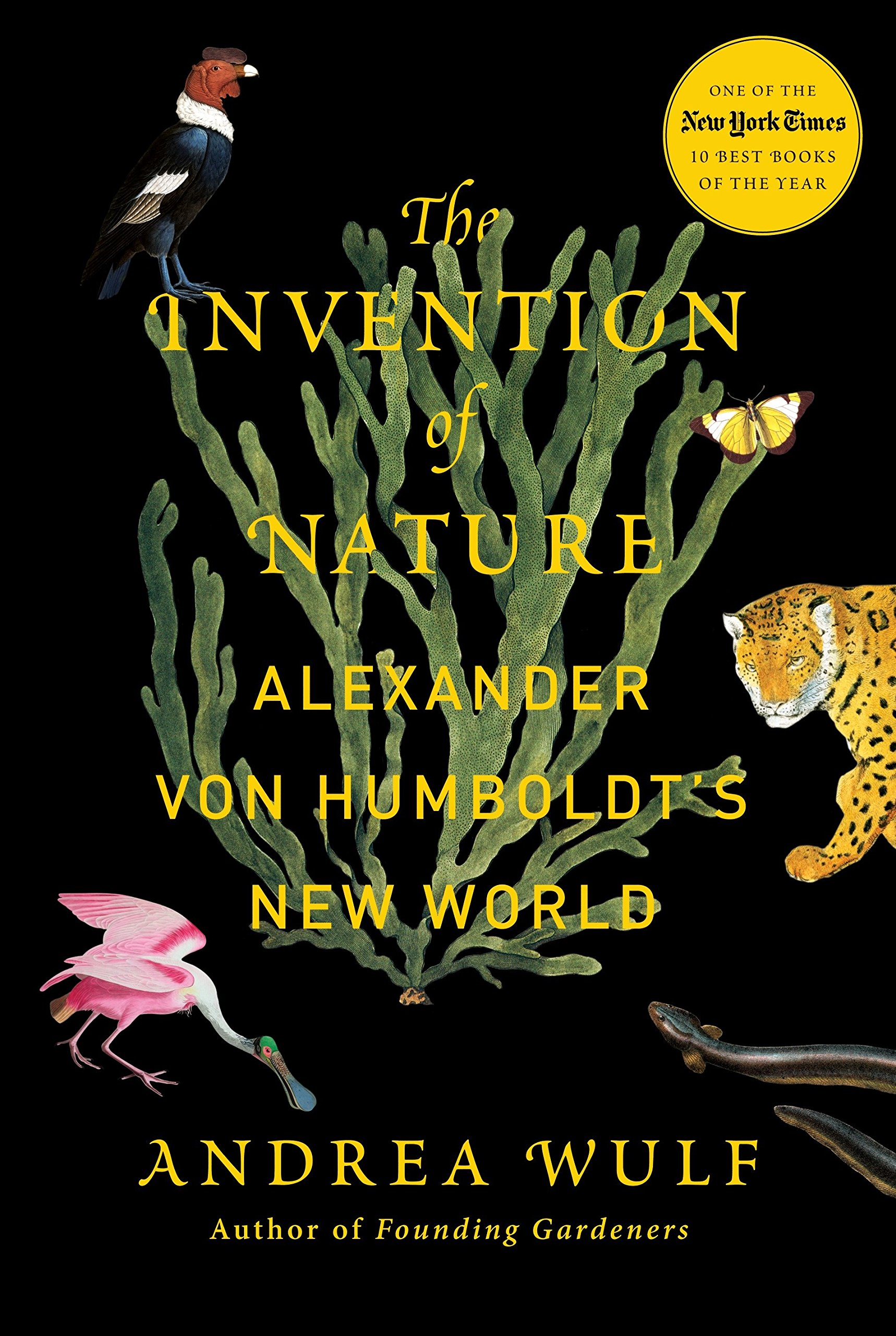 The Invention Of Nature  Alexander Von Humboldt's New World